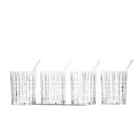 Nachtmann Whisky Set vierteilig mit 4 Glastrinkhalme und Reinigungsbürste