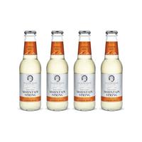 Swiss Mountain Spring Ginger Beer 20cl 4er Pack