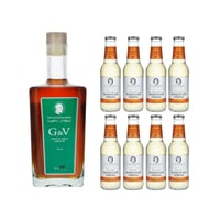 The Seventh Sense G&V Frucht- und Gewürzlikör 50cl mit 8x Swiss Mountain Spring Ginger Beer