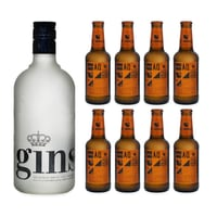 Ginself Dry Gin 70cl mit 8x Aqua Monaco Hot Ginger