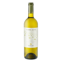 Ticino Gialdi SA Terre Alte Bianco Merlot 2020 75cl