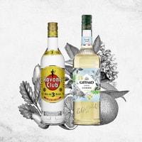 Cocktail Daiquiri