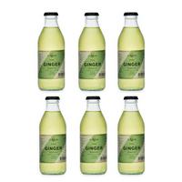 Ginger Beer Noe Mendrisio 20cl, 6er-Pack